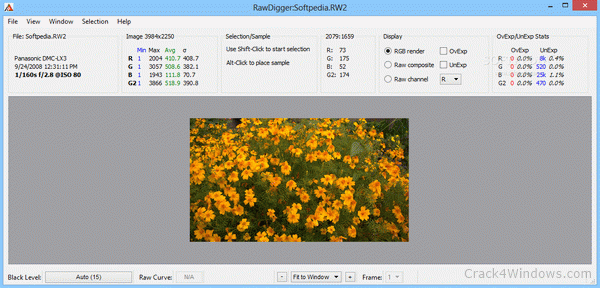 RawDigger Crack 1.4.4.712 With Activation Code 2021 Full Latest